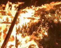 Grecia: Incendii de vegetație puternice pe insula Kefalonia