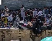 ONU: Riscul de foamete în Afganistan este iminent