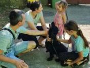 Poliția Animalelor a redat unei familii câinele dispărut de un an