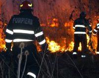 Incendiile forestiere se extind și fac victime în Bulgaria și Grecia