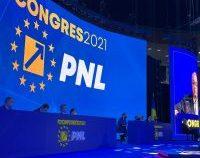 Duminică, delegații liberali aleg echipa care îl va ajuta pe Florin Cîțu să conducă PNL