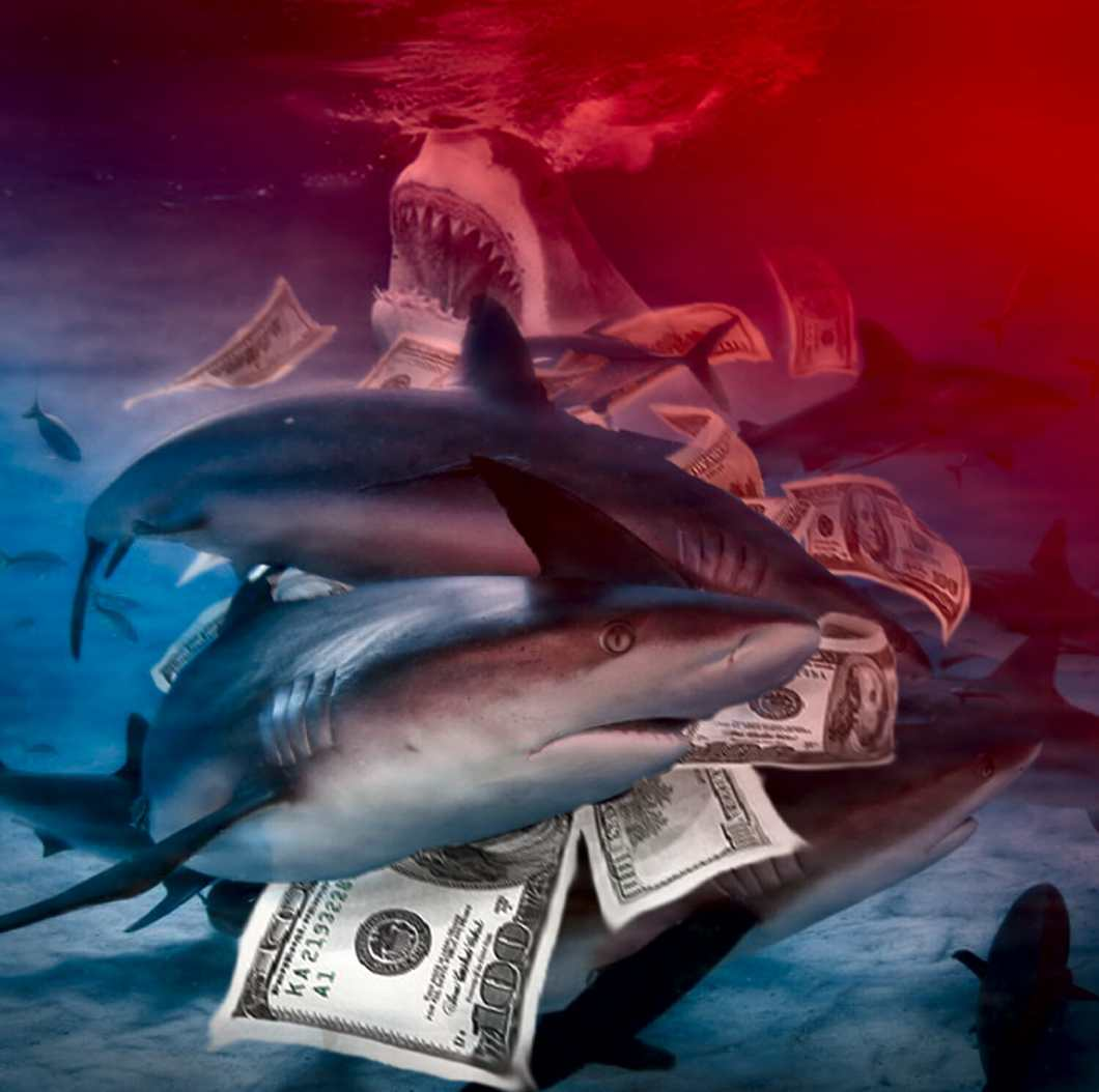 SHARK FEEDING FRENZY - Marshall Atkinson