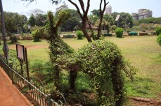 Some parks are beautiful -- The Hanging Gardens on Malabar Hill