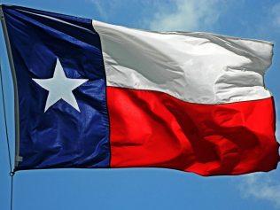 Texas Black Population