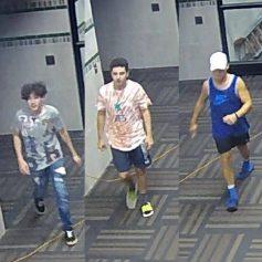 Edmond vandalism suspects