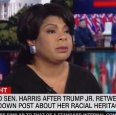 CNN analyst defends Kamala Harris