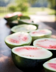 A bumper crop of heirloom watermelon halves line up on an antique farm table at Anne Quatrano and Clifford Harrison's Summerland Farm in Cartersville.