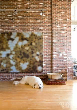 Schultz, a Great Pyrenees, rests under a painting by Michael Dines.
