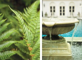 Existing plants, such as this fern, were kept to complement new garden elements, which included the addition of a fountain.