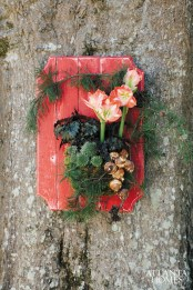 Painted red pine plank with moss basket of blooming amaryllis bulbs, evergreen sedums, black-wing begonias, pine bough and paperwhite bulbs, from $220.