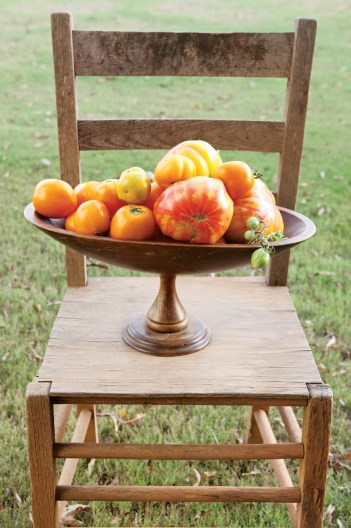 A still life of heirloom tomatoes picked from Keith Robinson's garden.