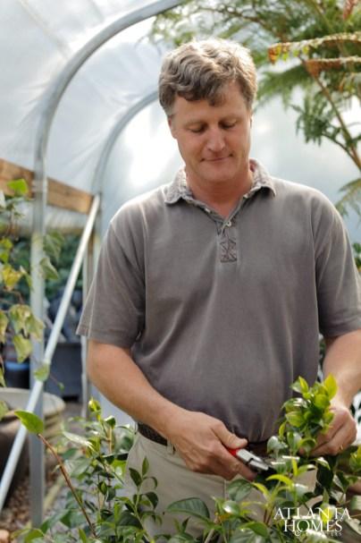 Inside a greenhouse, Smith prunes a tree.