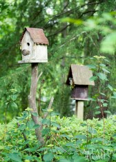 A pair of bird houses in the McWilliamses' collection.