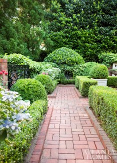 160601_JohnBanks_Garden_EGD_088