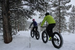 Indulge in a variety of alpine activities, including a winter biking adventure.