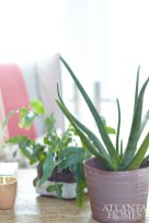 Potted plants add a touch of nature to the bedroom desk.