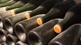 Bottles of champagne aging and awaiting hand corking at Champagne Brigandat.
