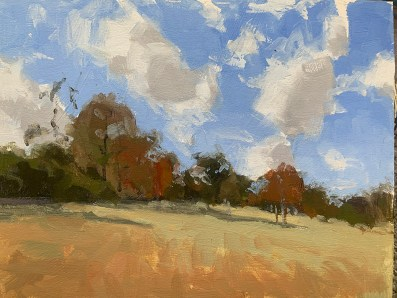 The Southern landscape is an ever-changing and always fascinating subject for Boyd.