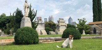Oakland Cemetery: Ryan says no October is complete without a visit to this historic burial ground.