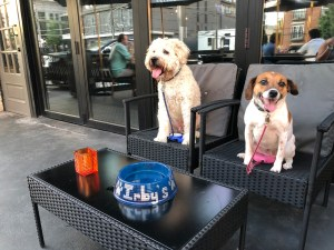 Irby's Tavern: Irby's Tavern is Buckhead's latest watering hole and sports bar with a pooch-approved patio.