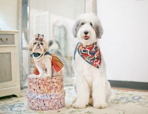 Sparkles the Diva and Sheepish Addie in designs by Mister Migs Photography by Mister Migs