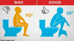 squattypotty2 300x169 - Importance of Proper Toilet Positioning