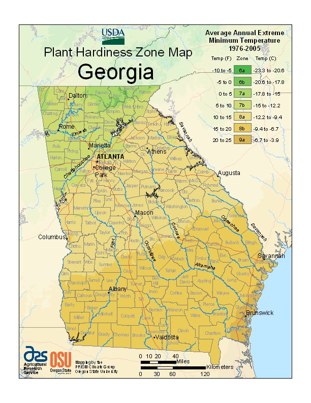 Plant Zone Map Georgia
