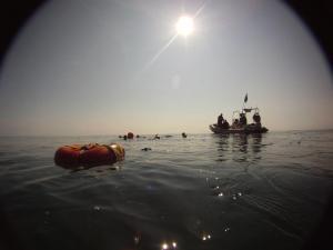 Stingray at sea
