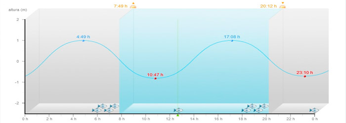 mareas-surf