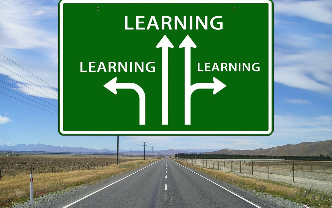 Develop a Skills Learning Plan – Definitely Learn, Partially Learn, Already Know, Definitely Don't Learn