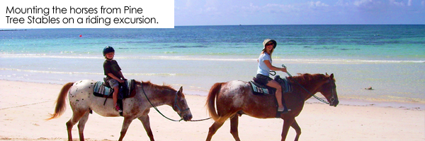 Journey to Grand Bahama Island