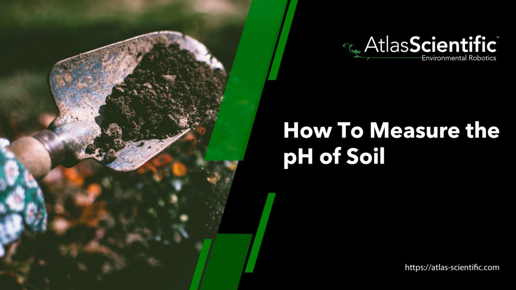 how-to-measure-the-ph-of-soil