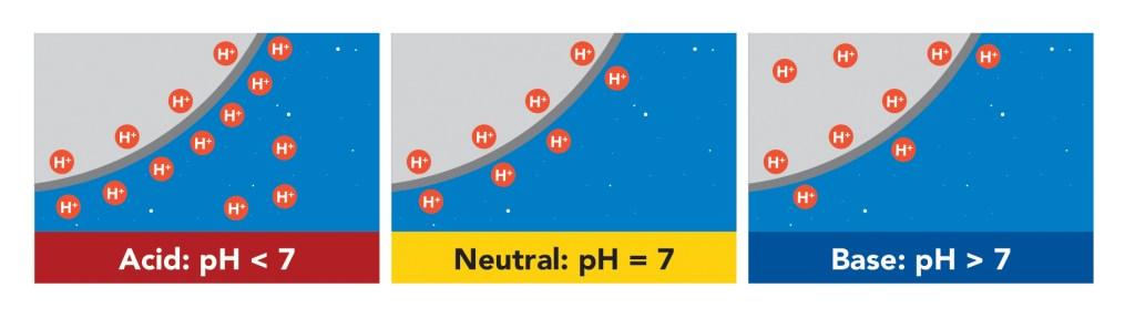 Understanding a Water pH Test Kit