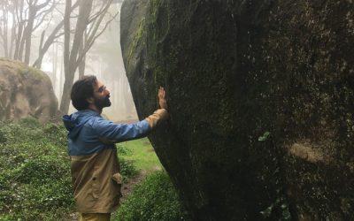 Meditação em movimento pela Natureza