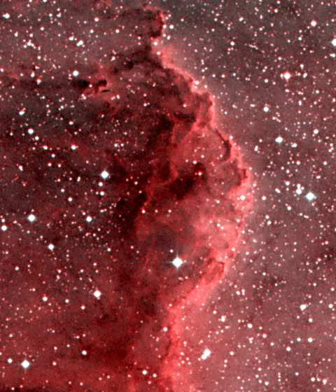 NGC7000 - The North America and Pelican Nebulae
