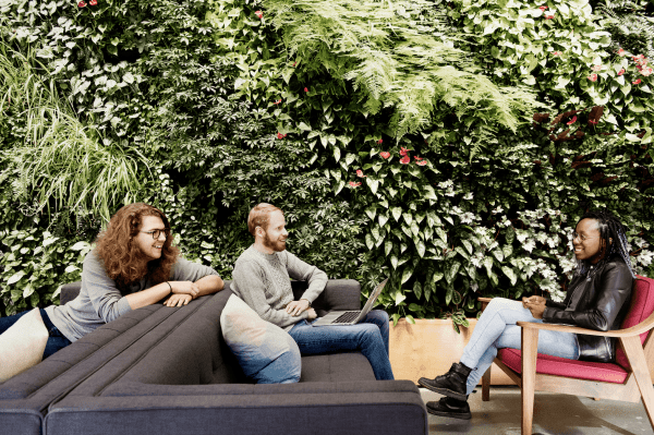 Sustainable workplaces are incorporating plants and living walls to improve air quality