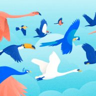 A flock of disparate birds, signifying the 16 Myers Briggs personality types