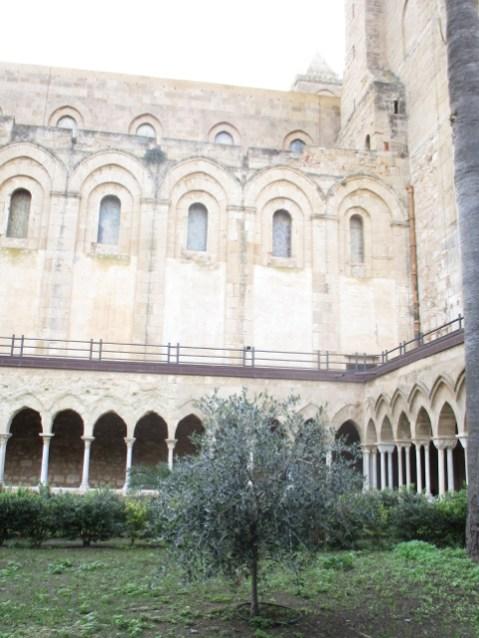 Garten des Evangeliums mit einem wilden Olivenbaum