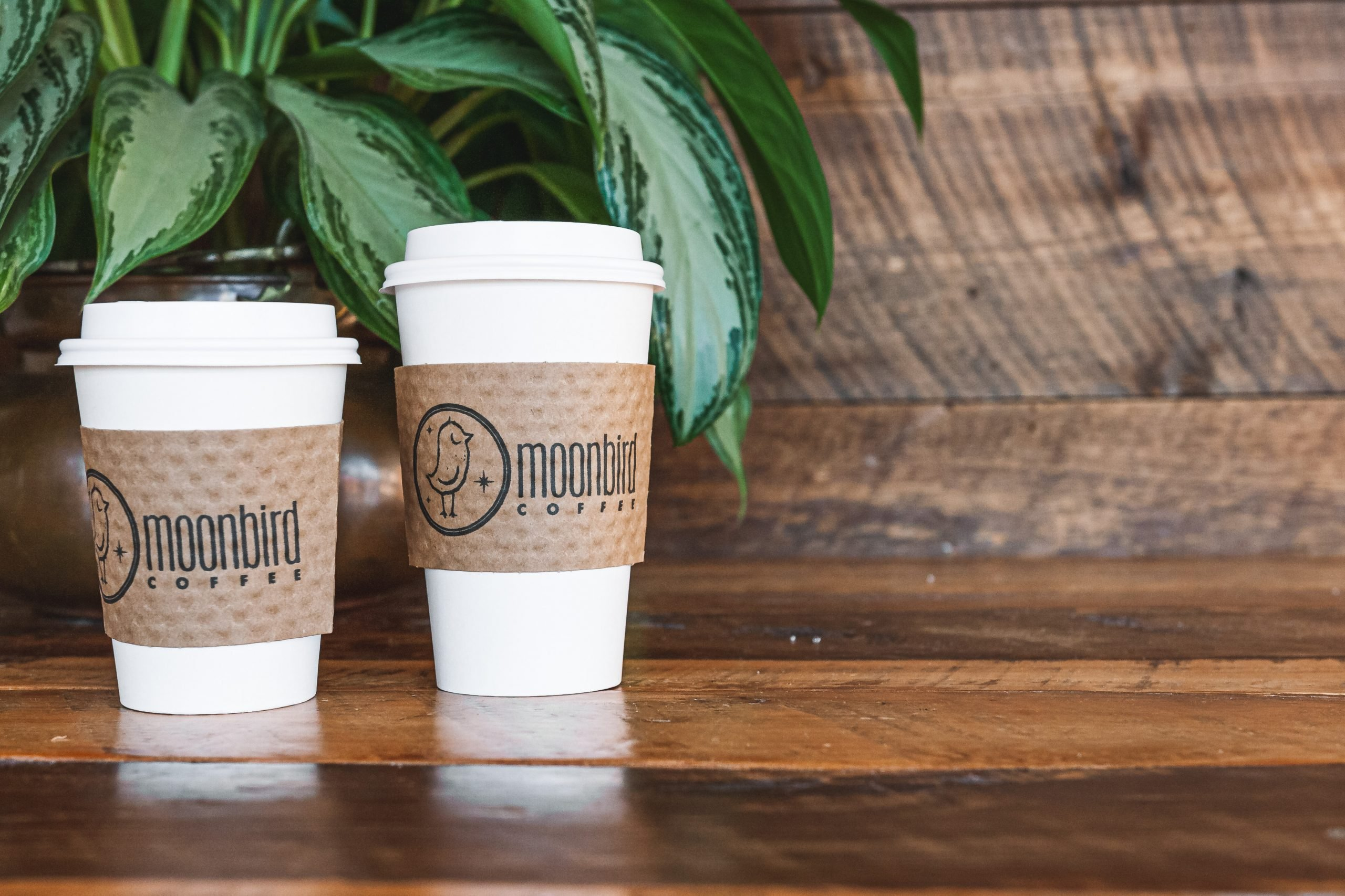 Picture of two to-go coffees on a wooden table with a plant in the background