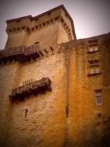 Castelnaud - le château