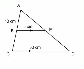 Postulates Amp Theorems