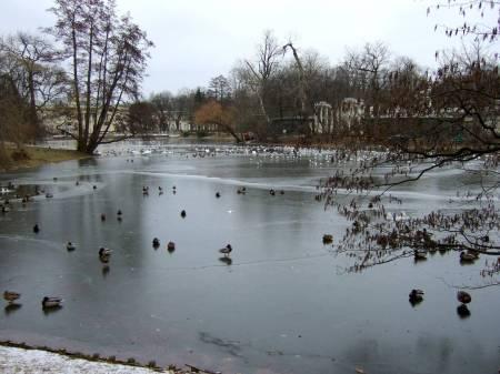 winter atmosphere, frozen lake