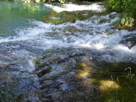 Rapids dense river
