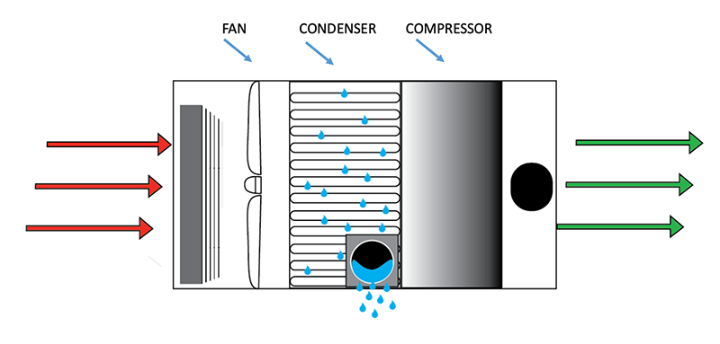Graphic showing how a crawl space dehumidifier works.