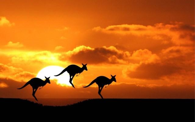 Australia top 10 adventures