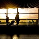Los mejores aeropuertos del mundo