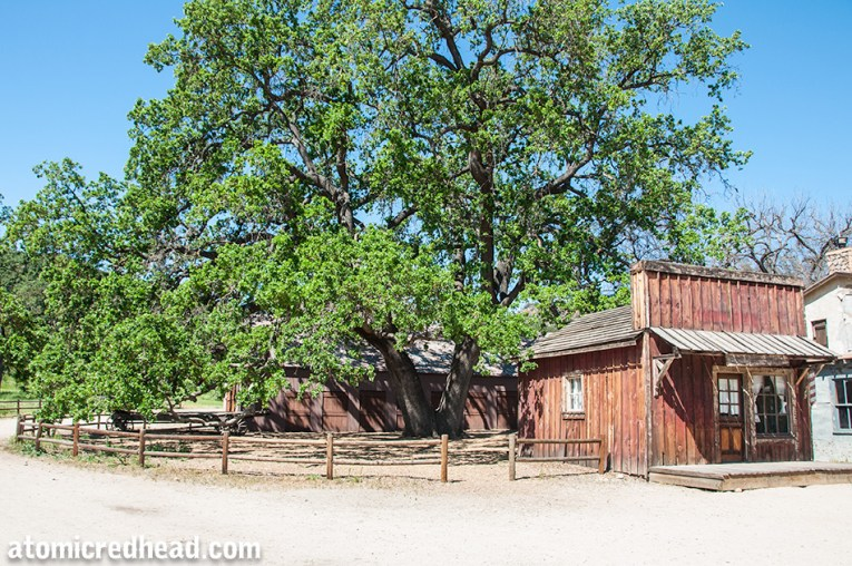 A large oak tree stands near a building that acted as the gazette. The shade of the tree is where Gracie had her restaurant.