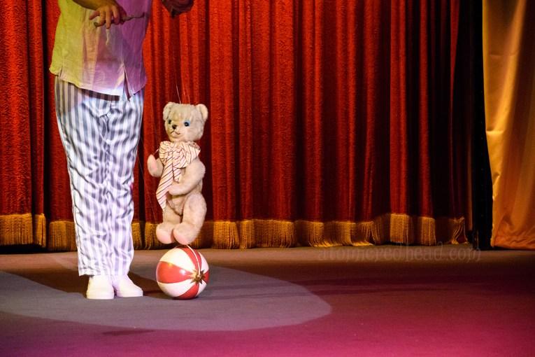 A bear rides atop a ball.