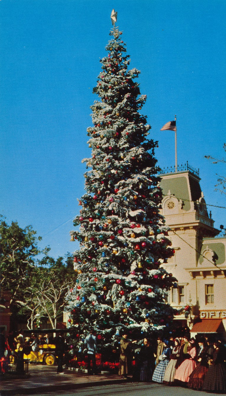 Another look at one of Disneyland's tall Christmas trees.