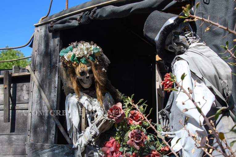 A pair of skeletons, one dressed as a bride, the other dressed as a groom sit in an old stagecoach.